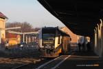 15.12.2013, Świdnica Miasto. SA134-004 jako pierwszy tego dnia pociąg z Wrocławia przed chwilą skończył bieg.