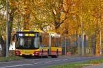 1.11.2015, Wrocław, ul. Buforowa. Już trzeci rok z rzędu na Wszystkich Swiętych, linie 145 i 146 zostają wydłużone do ronda przy ul. Strzelińskiej, między Wrocławiem, Iwinami i Żernikami Wrocławskimi. Od tego roku nowością jest tylko obsługa autobusami Michalczewskiego.