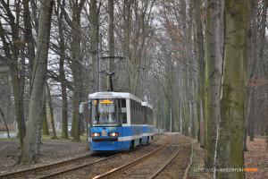 14.03.2016, Wrocław al. Różyckiego. Skład na linii 9.