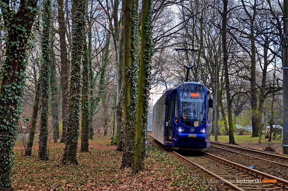 MPK kupuje 40 nowych tramwajów – znów będą Moderusy?