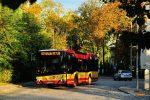 Solaris Urbino 10,5 IV #2024