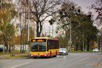 Mercedes Citaro #7354